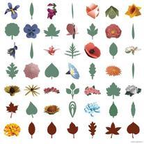 Cricut 3d Floral Home Decor Cartridge Searchub