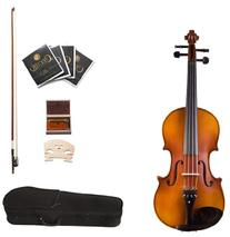 Cecilio CVA-500 16-Inch Ebony Fitted Solid Wood Viola