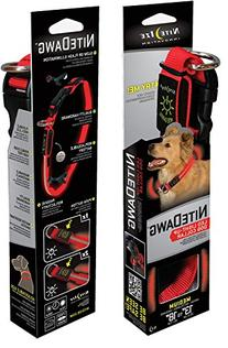 Nite Dawg LED Dog Collar Color: Red, Size: Medium