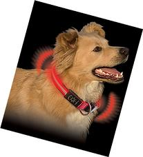 Nite Dawg - Red - Small - NND-03-10S
