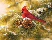 Perfect Timing - Lang December Dawn Cardinal Boxed Christmas