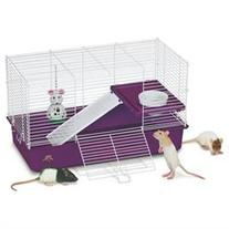 """Deluxe My First Home For Pet Rats/Sugar Gliders 12.5""""L x 24."""