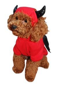 Anit Accessories Devil Bat Dog Costume, 8-Inch