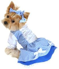 Anit Accessories 20-Inch Dorothy Dog Costume, Large