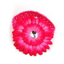 TOOGOO A Dozen of Assorted Colors Daisy Flower Clip