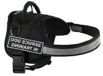 DT Works Harness, Service Dog In Training, Black/White,