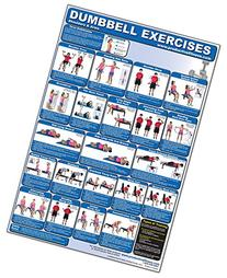 Dumbbell Exercises-Shoulders & Arms Laminated