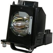 Electrified 915B403001 Replacement Lamp with Housing for
