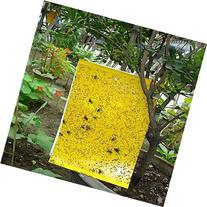 """DeepCatch 60 Pack 10"""" x 8"""" Dual-Sided Yellow Sticky Traps"""