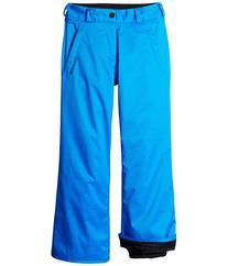 Volcom Kids - Explorer INS Pants   Boy's Outerwear