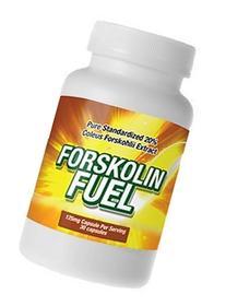 Forskolin Fuel - Forskolin Extract - 20% Coleus Forskohlii