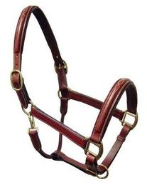 Paris Tack Fancy Stitch Padded Leather Adjustable Horse