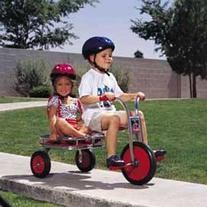 Angeles FB0500SR Carry-All Trike with Protective Gear