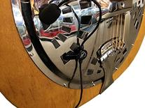 """THE FEATHER"" RESONATOR PICKUP with FLEXIBLE MICRO-GOOSE"