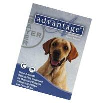 Flea Control for Dogs and Puppies Under 10 Lbs 4 Month
