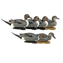 Greenhead Gear Pro-Grade Duck Decoy,Pintails,1/2 Dozen
