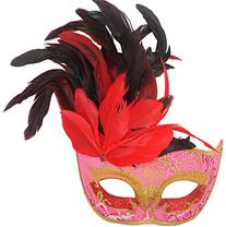 Coxeer Halloween Masquerade Feathers Beauty Princess Lace