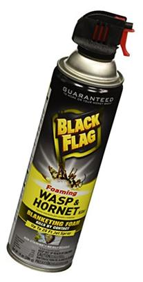 Black Flag HG-11089 Foaming Wasp & Hornet Killer Aerosol