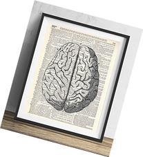 Human Brain Illustration  Upcycled Dictionary Art Print 8x10