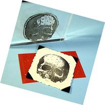 "Human Skull Stamp, clear polymer cling 2""x1.75"", includes"