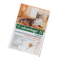 Advantage II Small Cat 5lbs to 9lbs - 6 pack Orange