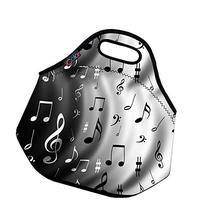Insulated Lunch box Food Bag Neoprene Gourmet Handbag