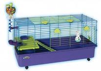 Kaytee Guinea Pig Home Ez Clean