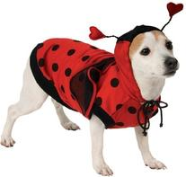 Rubie's Lady Bug Pet Costume, Small