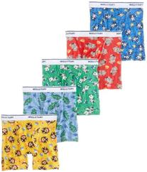 Fruit of the Loom Little Boys'   Boxer Brief , Multi, 4T