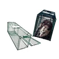 Live Animal Trap 31 X 9 X 11 Cage Skunks Cats Raccoons Green