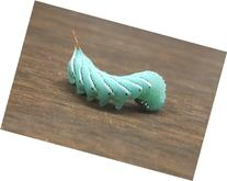 25-30 Live Hornworms by Tomato Goliath hornworms