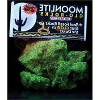 Carib Sea Moo SCS00307 nlite Reptiles Aquariam Glow in The
