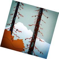 Mt. Hood Bird Watcher, Mounted Print of Original Painting by