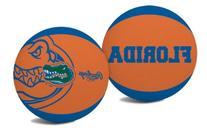 NCAA Florida Gators Alley Oop Dunk Basketball by Rawlings