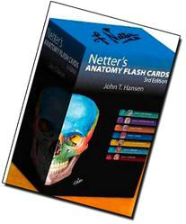 Netter's Anatomy Flash Cards: with Online Student Consult