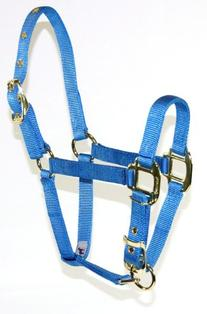 Hamilton 3/4 Inch Nylon Adjustable Halter, Weanling 200 to