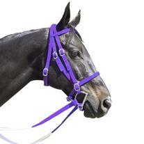Intrepid International Nylon Race Horse Bridle, Purple