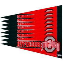 Ohio State Buckeyes Mini Pennants - 8 Piece Set