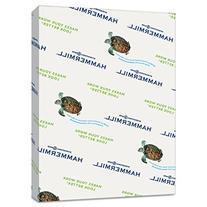 Hammermill Paper, Colors Goldenrod, 20lb, 8.5x11, Letter,