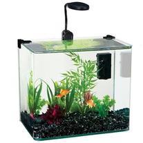Penn Plax Curved Corner Glass Aquarium Kit, Filter, LED