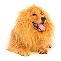 Large Pet Dog Cat Lion Wigs Mane Hair Festival Party Fancy