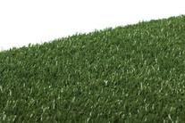 Prevue Hendryx 502G Pet Products Replacement Tinkle Turf,
