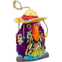 "Pete the Parrot 8"" Polly Wanna Pinata Bird Toy"