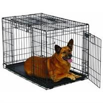 MidWest Homes for Pets Ovation Double Door Dog Crate, 36-
