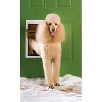 PetSafe Extreme Weather Energy Efficient Pet Door, White,
