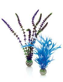 biOrb Blue/Purple Plant Pack