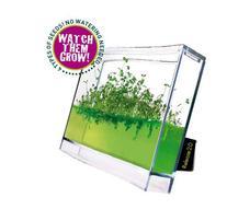 Globus Plantarium Super Educational Kit