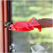 Perky-Pet Plastic Window Hummingbird Feeder  HBW1