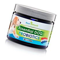 Best Natural Probiotic for Dogs Puppy and Dog Probiotic