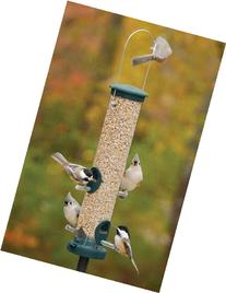 Quick Clean Spruce Seed Lrg set of 2